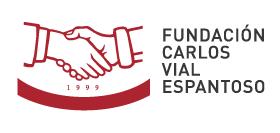 Fundación Carlos Vial Espantoso