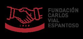 Fundación Carlos Vial Espantoso | Construyendo colaboración y confianza en el trabajo